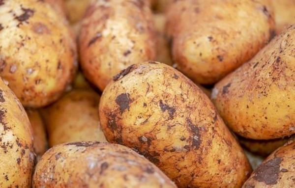 patatas preparación